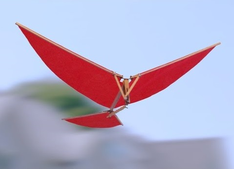 Budujemy ornitopter